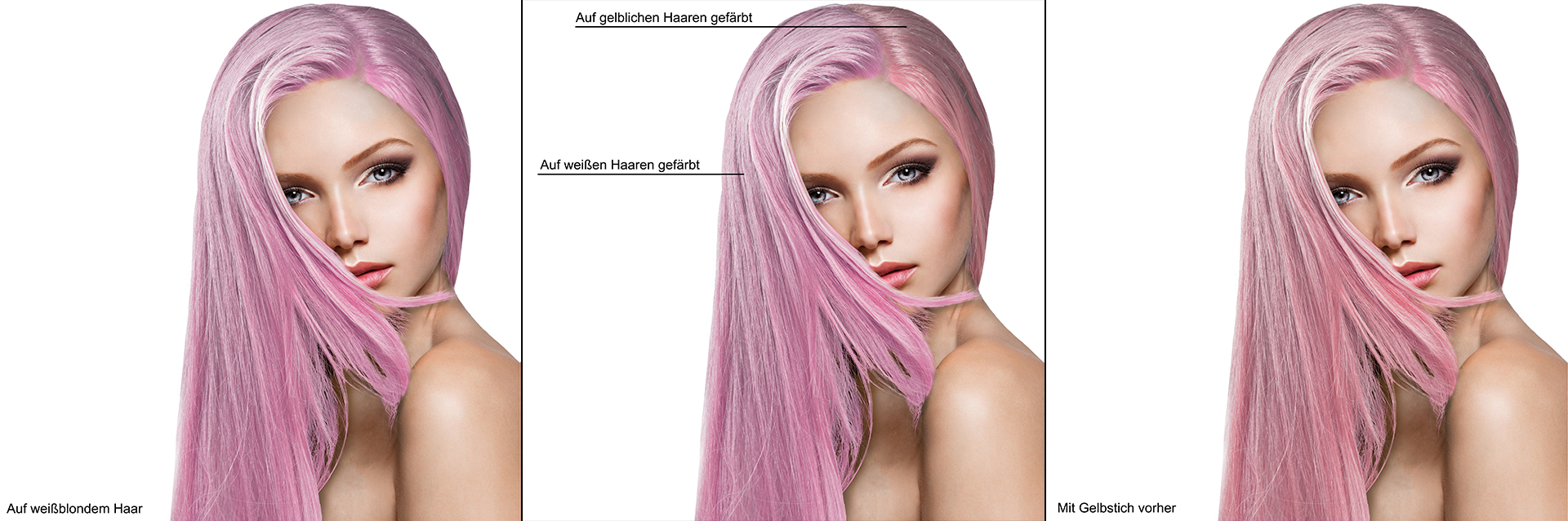 Erkl-rreihe-Pink-s-Not-Dead